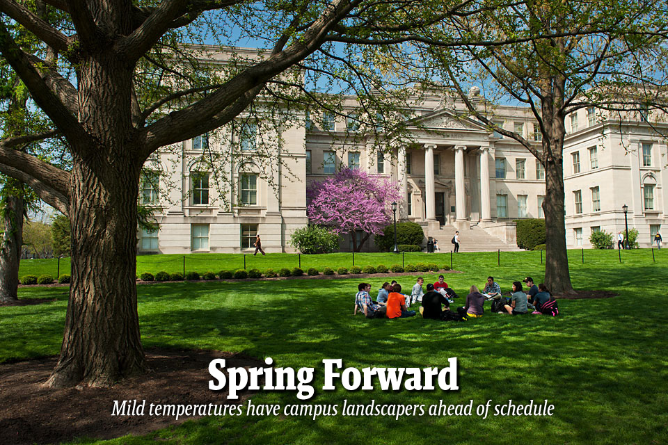 Spring Forward--Mild temperatures have campus landscapers ahead of schedule